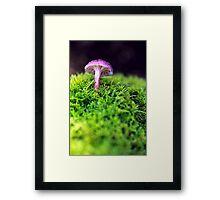 """PinkY"" Framed Print"