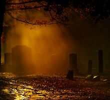 Late October by Mary Ann Reilly