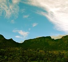Green on the blue mountain by rahuldb