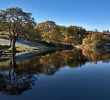 Loughrigg Reflection by SteveMG