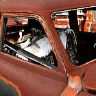 Rust Bucket ~ BoneYard Series by Carla Jensen