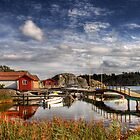Swedish summer by aakashchawade