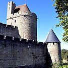 Carcassonne by Pat Herlihy