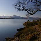 Balmaha, Loch Lomond by Susan Dailey
