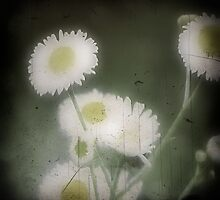 forget me...love me not by leapdaybride