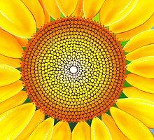 Beautiful sunflower of summer by Elspeth McLean