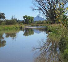 Water running in the Santa Cruz by DAdeSimone