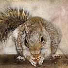 Blonde Squirrel by Kay Kempton Raade