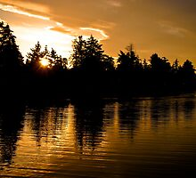 Golden Ripples by Sandra Parlow
