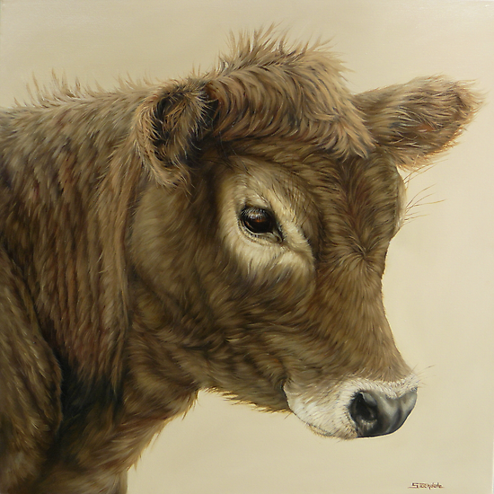 Gentle Calf by Margaret Stockdale