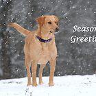 Season's Greetings by DebbieCHayes