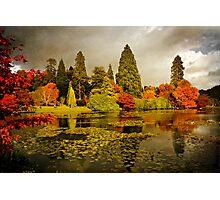 Autumn colours, Sheffield Park Photographic Print