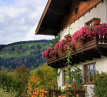 Typical Austrian architecture by Susan Leonard