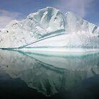 Iceberg in Nekko bay, Antarctica by Marion Joncheres