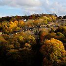 Autumn in Huddersfield by David Robinson