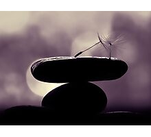 finding the balance Photographic Print