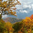 Painted Parkway - Blue Ridge Mountains Fall Foliage by Dave Allen