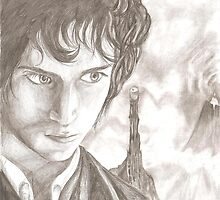 Frodo in Mordor by Furzzy15