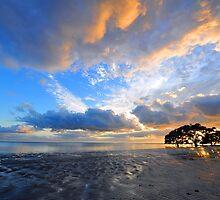 Sunrise At Nudgee Beach. Brisbane, Queensland, Australia. by Ralph de Zilva