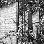 The Secret Garden by nannamanson