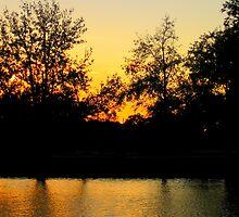Sunset @ Bayou St. John by L.D. Bonner