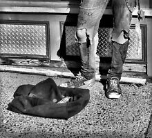 Ms Bojangles by ShutterUp Photographics