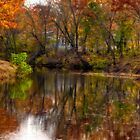 Nashua River by Monica M. Scanlan