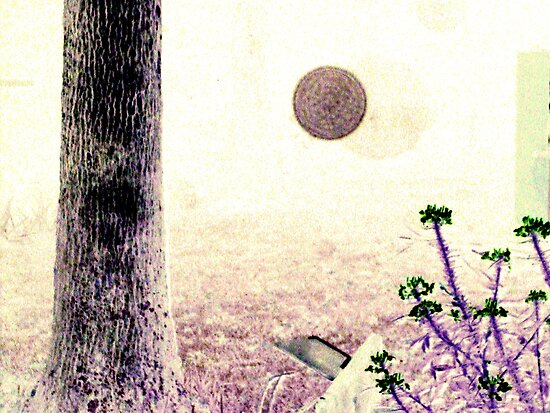 Orb Photograph #1 by PaulCoover