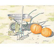 Home Grown Halloween! Photographic Print