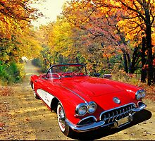 JohnDSmith's 59 Vette by WildBillPho