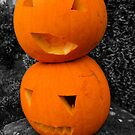 Two pumpkins by Roxy J