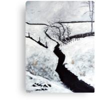 Black and White Study Canvas Print