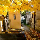 Pere Lachaise Cemetery III by Louise Fahy
