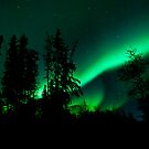 Auroras Nights by peaceofthenorth
