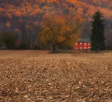 Autumn And A Red House by Pat Abbott