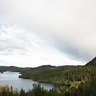Summer sky at lake Vågsfjärden, Höga Kusten / High Coast, Sweden by intensivelight