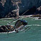Sonoma Coast Flight by Ken Scarboro