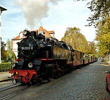"MVP80 The ""Molli"" steam train in Bad Doberan, Germany. by David A. L. Davies"