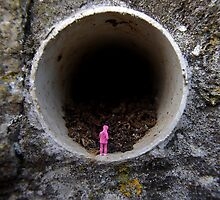 Petrified in Pink by Mark Wilson