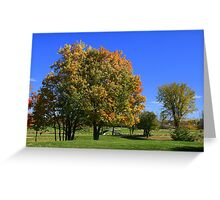The Bridges To Fall Colours Greeting Card