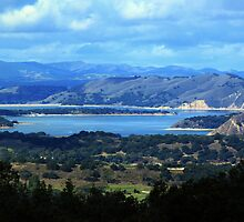 Cachuma Lake by Renee D. Miranda