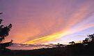 Sunrise 1 November 2010 by Odille Esmonde-Morgan