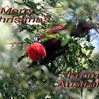Ecci Christmas by Kristina K