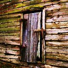 The Old Barn Door by Chelei