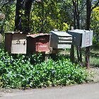 letter boxes by sarbi