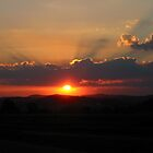 Highveld Sunset by Rodney Fagan