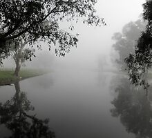 Billabong in the Mist,near Gundagai,Southern N.S.W, Australia. by kaysharp
