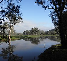 Billabong in the Sunshine, near Gundagai, N.S.W, Australia. by kaysharp