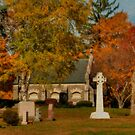 Saint Patrick's Cemetery by Monica M. Scanlan