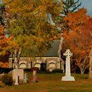 Saint Patrick's Cemetery by Monica M. Scanlan